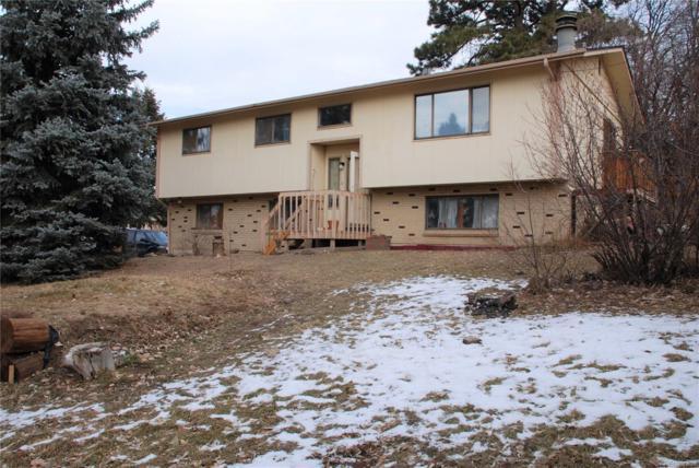 1104 Bulkey Street, Castle Rock, CO 80108 (#3194176) :: The HomeSmiths Team - Keller Williams