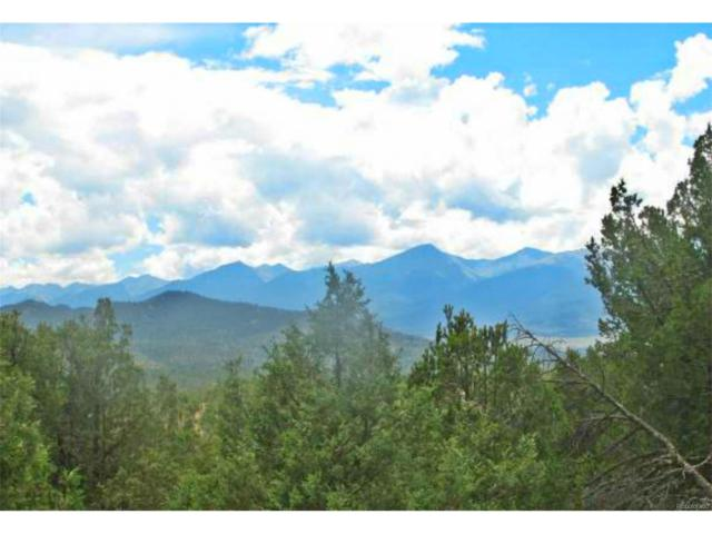 2552 Pronghorn Path, Cotopaxi, CO 81223 (MLS #3194982) :: 8z Real Estate