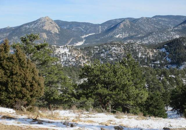 Tbd, Estes Park, CO 80517 (MLS #3195295) :: 8z Real Estate