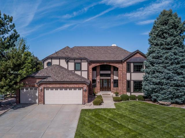 1924 Terrace Drive, Highlands Ranch, CO 80126 (#3202683) :: The Peak Properties Group