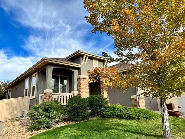 10868 Glengate Circle, Highlands Ranch, CO 80130 (#3203777) :: The DeGrood Team