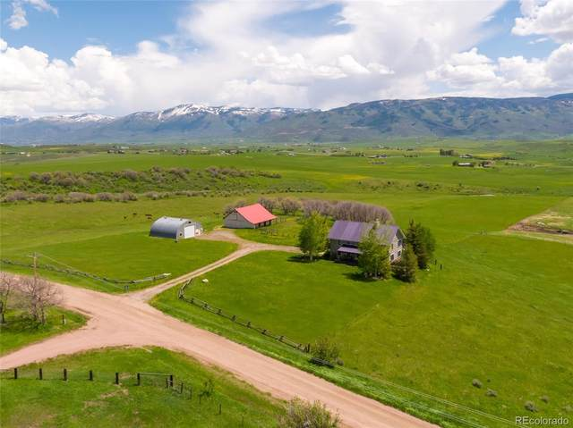 29250 County Road 14A, Steamboat Springs, CO 80487 (#3205384) :: Mile High Luxury Real Estate