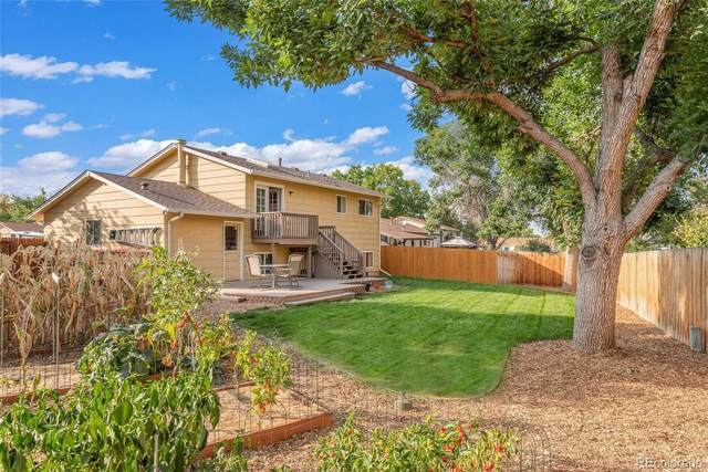 9154 Cody Court, Westminster, CO 80021 (#3205946) :: My Home Team