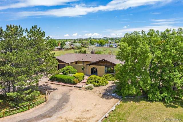 14258 Downing Street, Brighton, CO 80602 (#3206416) :: The DeGrood Team