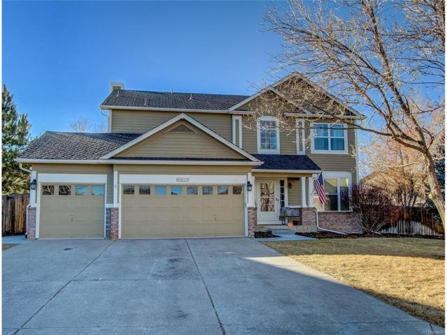 9817 Cypress Point Circle, Lone Tree, CO 80124 (#3207715) :: The Thayer Group