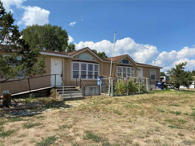 86 Palmer Avenue, Poncha Springs, CO 81242 (#3209931) :: Bring Home Denver with Keller Williams Downtown Realty LLC