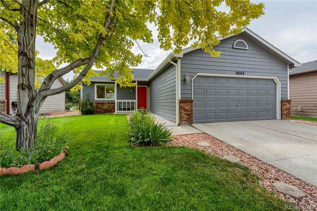 2442 Calcite Street, Loveland, CO 80537 (MLS #3210078) :: Neuhaus Real Estate, Inc.