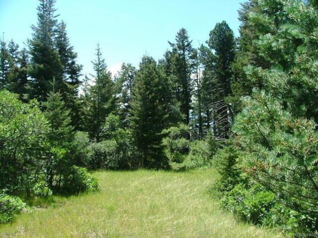 Lot 36 Tres Valles West, La Veta, CO 81055 (MLS #3215320) :: 8z Real Estate