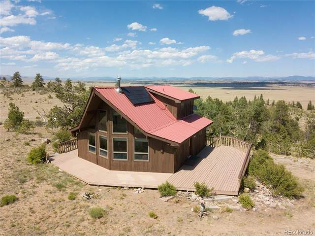 184 Deadman Road, Hartsel, CO 80449 (MLS #3218343) :: Bliss Realty Group