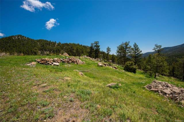 8317 Spirit Horse Trail, Golden, CO 80403 (#3220488) :: Briggs American Properties