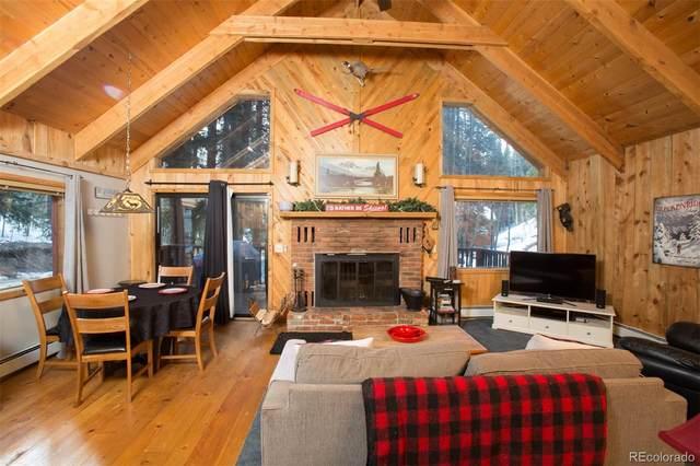 840 Peterson Drive, Alma, CO 80420 (#3221710) :: Colorado Home Finder Realty