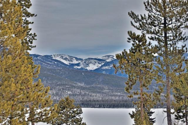 255 County Road 465, Grand Lake, CO 80447 (#3223194) :: The Heyl Group at Keller Williams