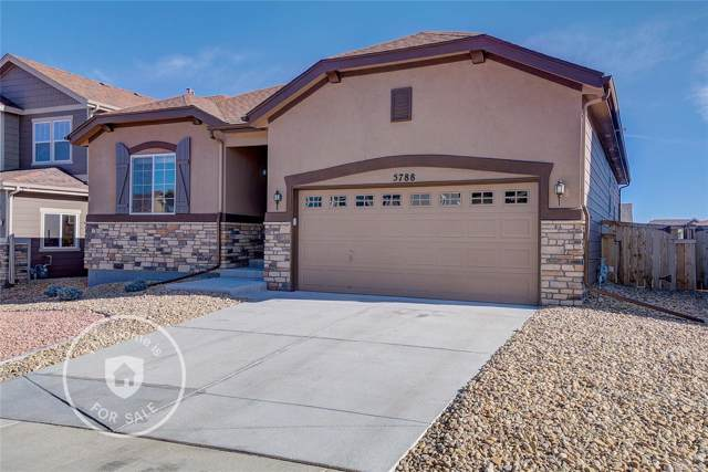 5788 Haywagon Lane, Castle Rock, CO 80108 (#3225063) :: The Heyl Group at Keller Williams