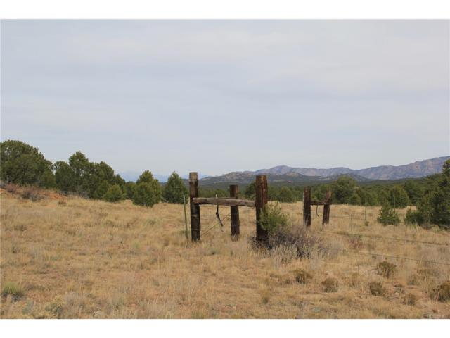 250 Kerrs Hill Circle, Westcliffe, CO 81252 (MLS #3225254) :: 8z Real Estate