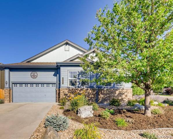 3408 Grey Court, Castle Rock, CO 80104 (MLS #3227310) :: 8z Real Estate