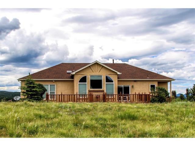 119 Pennsylvania Avenue, Woodland Park, CO 80863 (MLS #3230264) :: 8z Real Estate