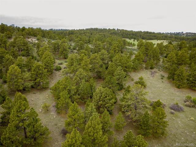 0002 County Road 102, Elbert, CO 80106 (#3230313) :: Compass Colorado Realty