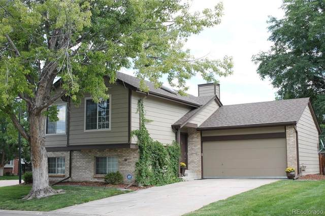 9312 Balsam Court, Highlands Ranch, CO 80126 (#3231835) :: The Harling Team @ HomeSmart