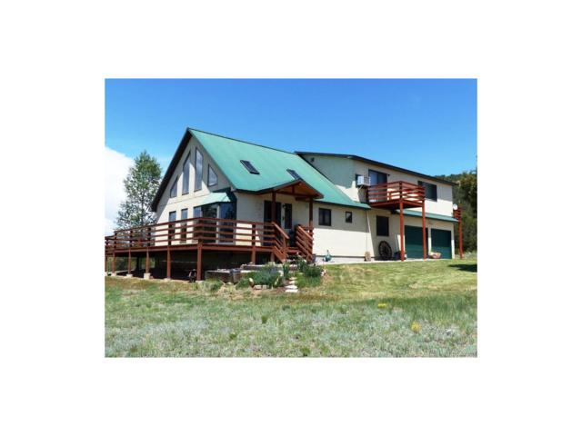 504 Mears Road, Cotopaxi, CO 81223 (MLS #3241373) :: 8z Real Estate