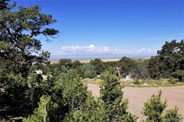 1848 Lone Pine Way, Crestone, CO 81131 (#3241959) :: Mile High Luxury Real Estate