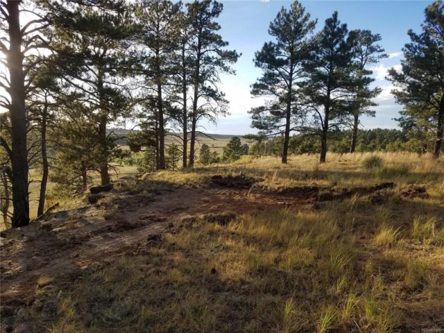 23054 Jasper Trail, Deer Trail, CO 80105 (#3247339) :: The Heyl Group at Keller Williams