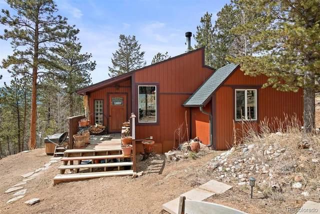 618 Burton Street, Bailey, CO 80421 (MLS #3248729) :: 8z Real Estate