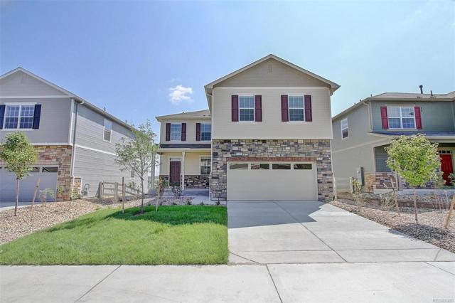 5976 Sun Mesa Circle, Castle Rock, CO 80104 (#3248921) :: The Pete Cook Home Group