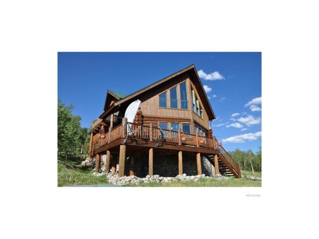 145 Beaver Ridge Court, Fairplay, CO 80440 (#3250451) :: Wisdom Real Estate