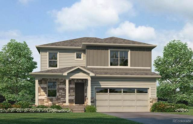 4779 Trails Edge Lane, Castle Rock, CO 80104 (#3253279) :: Finch & Gable Real Estate Co.