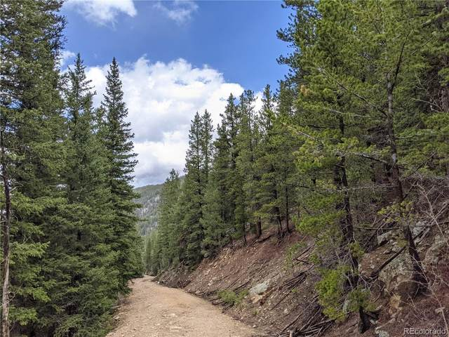 0 Old Little Bear Creek Road, Idaho Springs, CO 80452 (MLS #3253594) :: Clare Day with Keller Williams Advantage Realty LLC