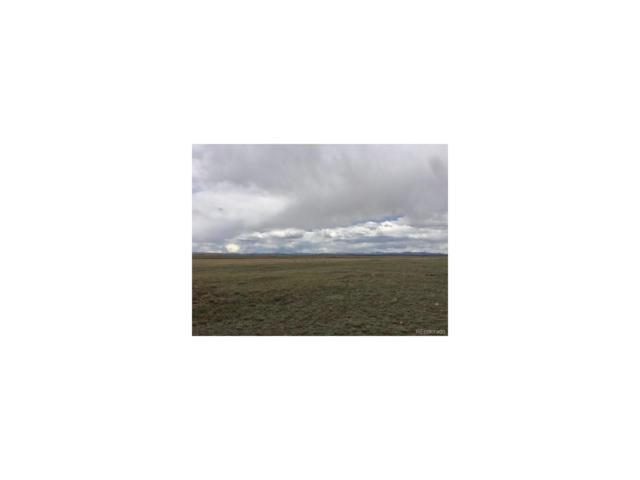 Rogers Road, Hartsel, CO 80449 (MLS #3259634) :: 8z Real Estate