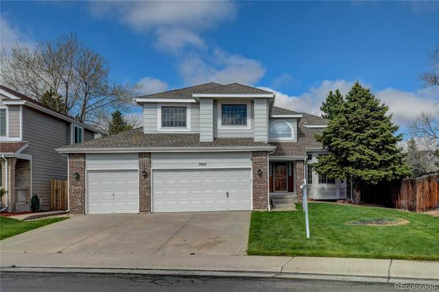 7165 S Newcombe Street, Littleton, CO 80127 (MLS #3261065) :: 8z Real Estate