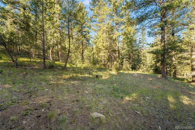 0 Evergreen Drive, Conifer, CO 80433 (#3261568) :: The Colorado Foothills Team | Berkshire Hathaway Elevated Living Real Estate