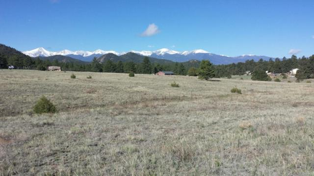 14th Trail, Cotopaxi, CO 81223 (#3261921) :: Structure CO Group