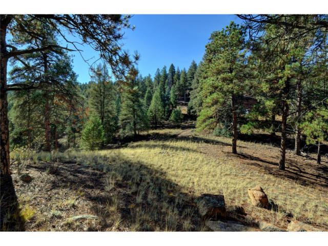 17038 Blue Heron Drive, Pine, CO 80470 (MLS #3262980) :: 8z Real Estate