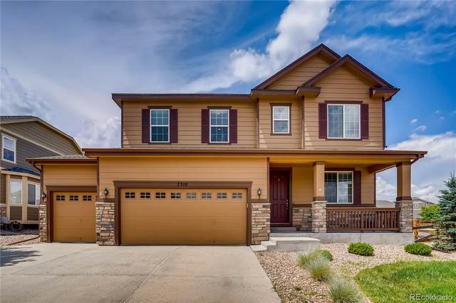 7310 Blue Water Drive, Castle Rock, CO 80108 (#3264808) :: The DeGrood Team