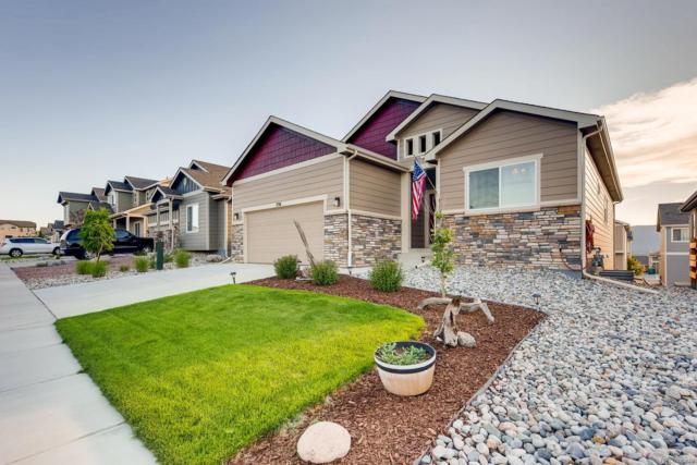 756 Tailings Drive, Monument, CO 80132 (MLS #3265738) :: 8z Real Estate