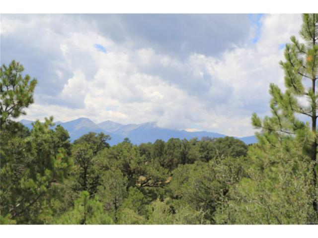 633 Canyon Road, Cotopaxi, CO 81223 (#3269110) :: Bring Home Denver