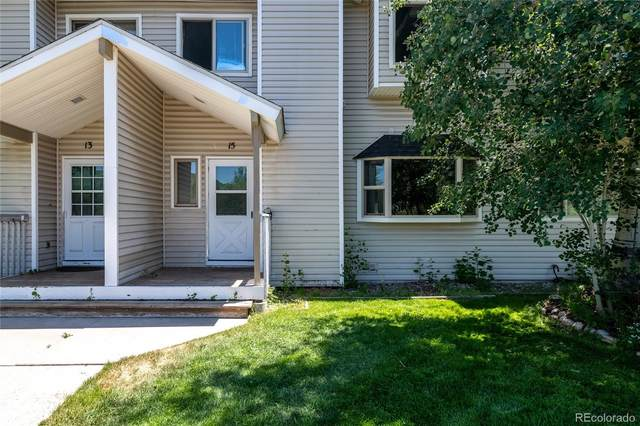 15 Jackpine Court, Steamboat Springs, CO 80487 (MLS #3272461) :: Bliss Realty Group
