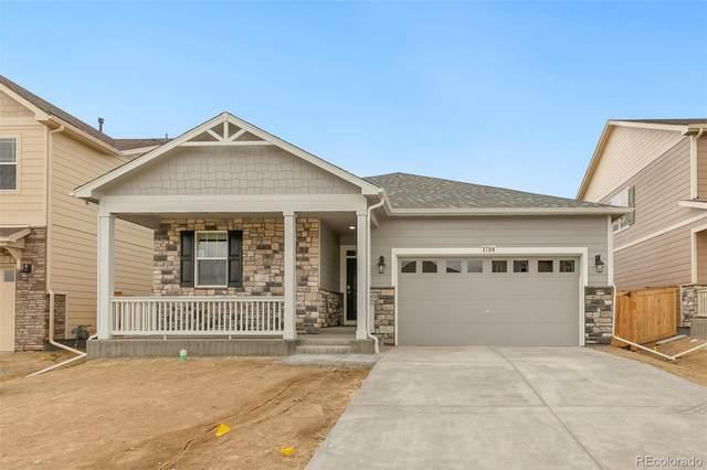 2000 Rose Petal Drive, Windsor, CO 80550 (MLS #3273741) :: 8z Real Estate