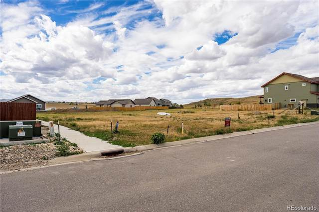 975 Dry Creek South Road, Hayden, CO 81639 (#3273968) :: The Dixon Group
