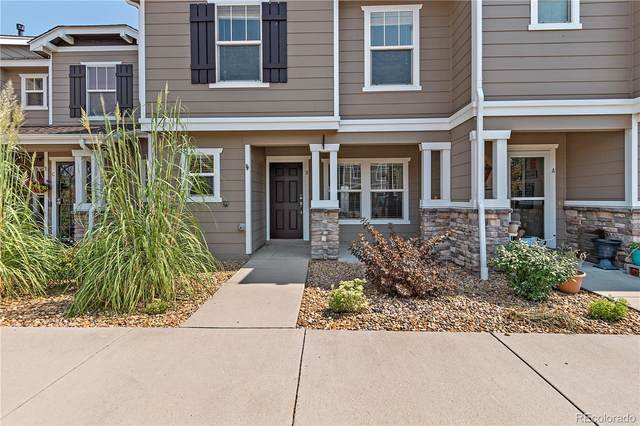 9066 Apache Plume Drive B, Parker, CO 80134 (#3286958) :: Chateaux Realty Group