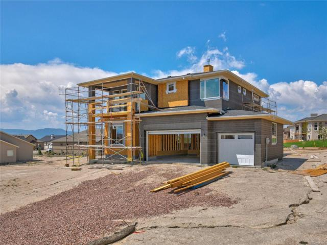 1862 Mud Hen Drive, Colorado Springs, CO 80921 (MLS #3294029) :: Kittle Real Estate