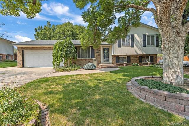 6341 W Maplewood Place, Littleton, CO 80123 (#3294713) :: Symbio Denver