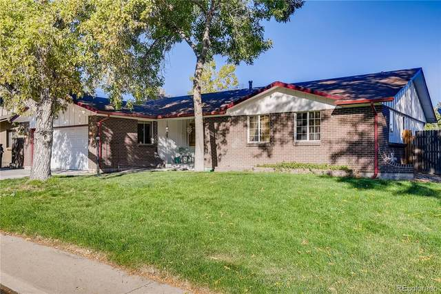844 S Nelson Way, Lakewood, CO 80226 (#3296707) :: HomeSmart Realty Group