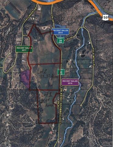 101 - Lot 2 County Road 40, Coaldale, CO 81222 (#3300005) :: The DeGrood Team