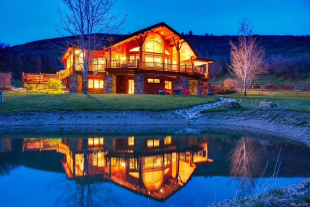 44500 Diamondback Way, Steamboat Springs, CO 80487 (#3306929) :: The Griffith Home Team