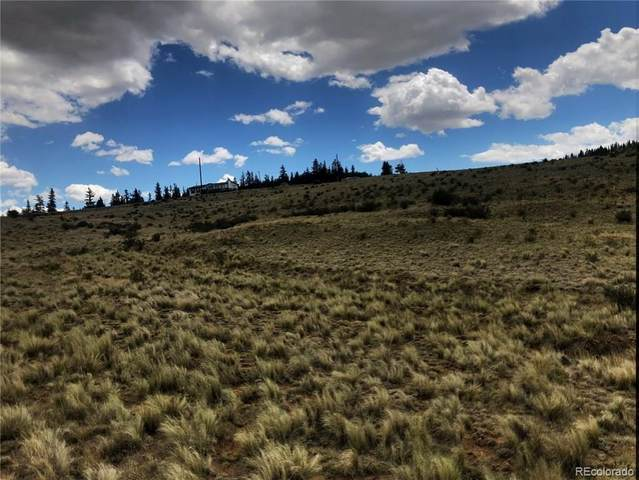 942 Quarter Horse Road, Jefferson, CO 80456 (#3309826) :: The Griffith Home Team