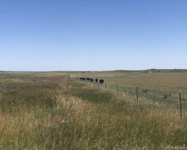 0002 County Road 94, Elbert, CO 80106 (#3310900) :: The DeGrood Team