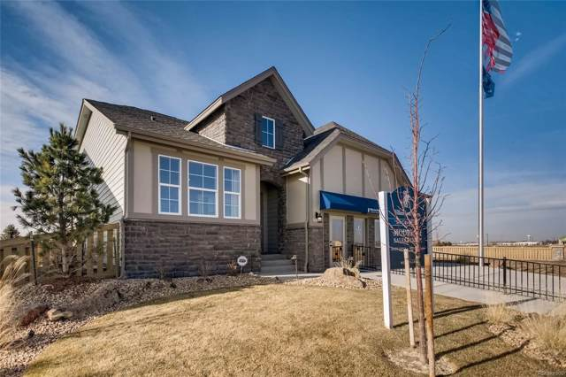 1046 Marfell Street, Erie, CO 80516 (#3311002) :: The Griffith Home Team